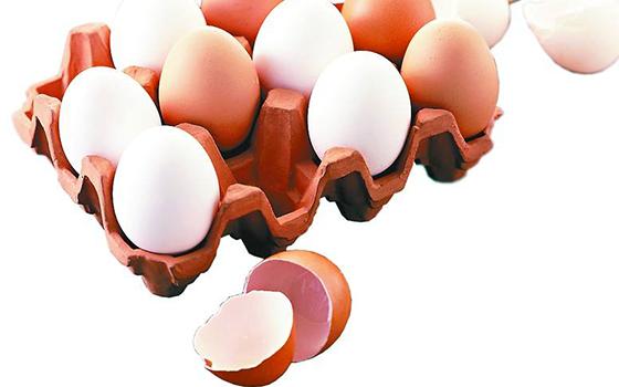 鸡蛋价格上涨