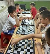 金艺城.国际象棋