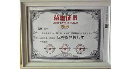金艺城荣获荣誉证书5