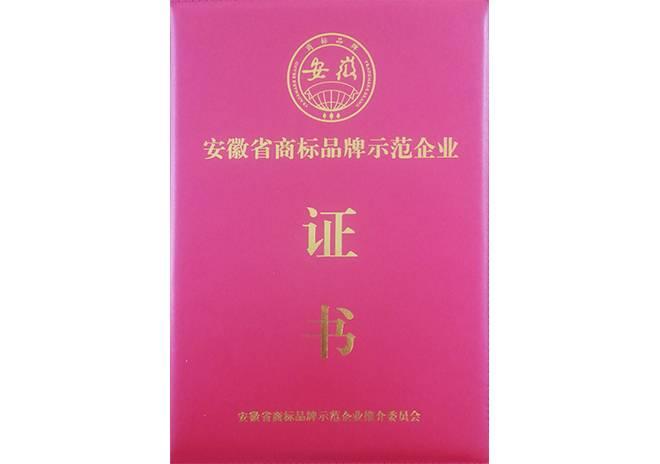 至翔荣获安徽省商标品牌示范企业证书