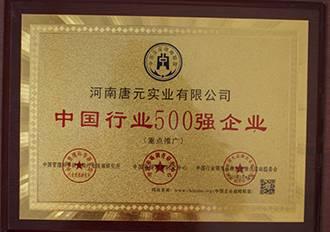 唐元荣获中国500强企业
